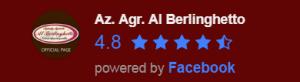 fb recensioni al berlinghetto facebook